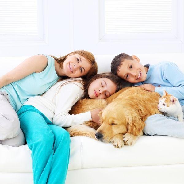 Revitalise Spray safe for all the family